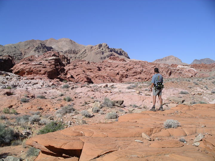 A lone man stands on a red plateau, examining the outcroppings ahead.